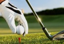 GOLF DAY 2015 CANCELLED