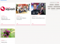 ES New Website 2016